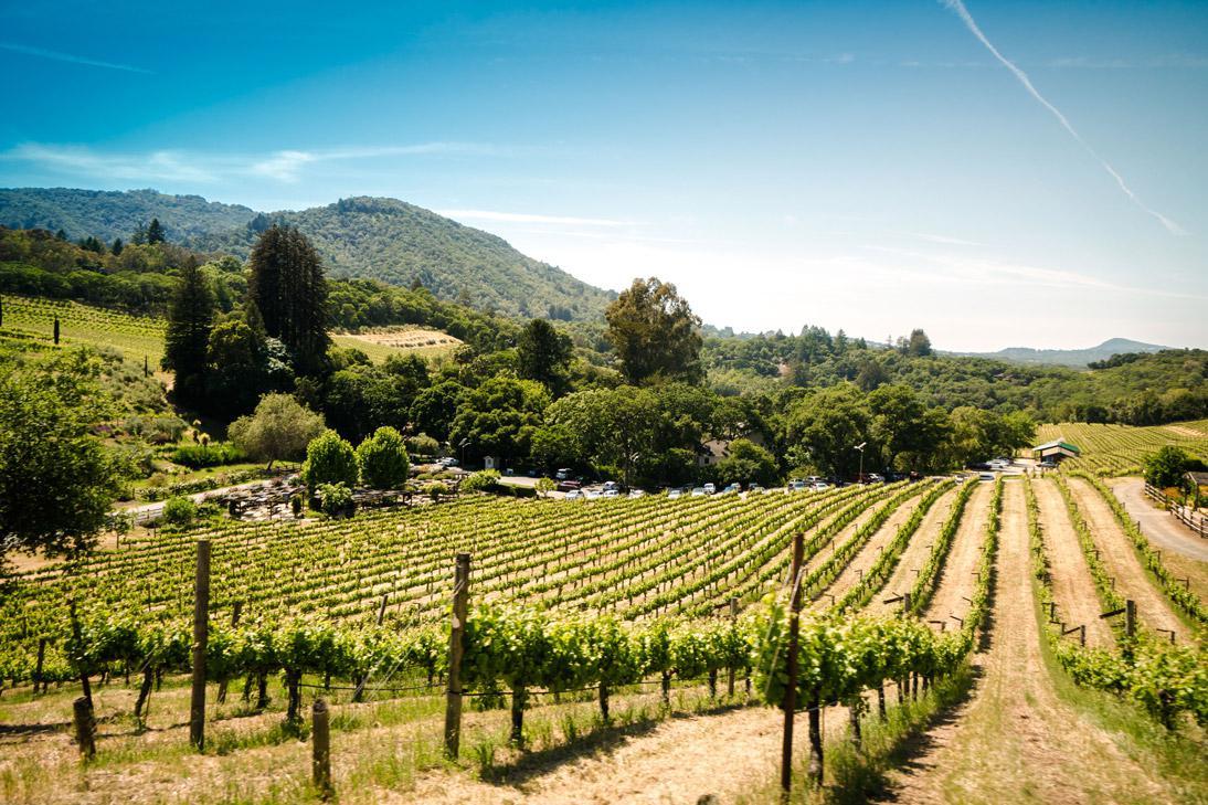 Doprava na vínne cesty